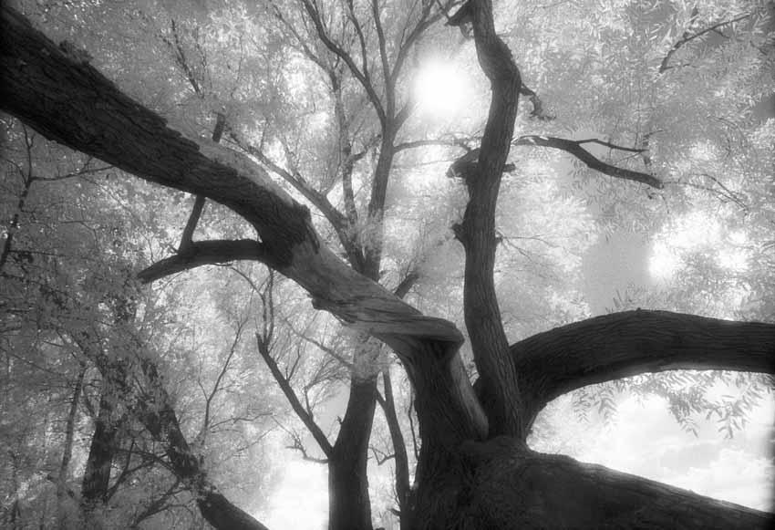Julia Scheel – FOTOGRAFIE